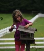 Granddaughter feeding bluebirds