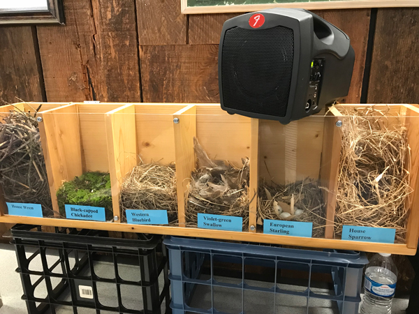 Prescott Bluebird Project Nest Display