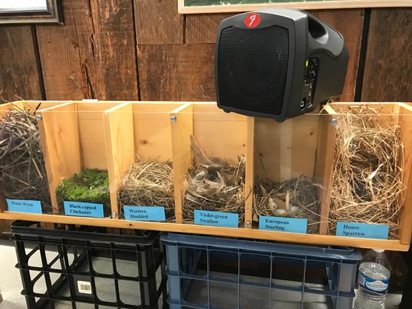 Prescott Bluebird Project Nest Display